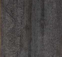 4490 Lucida